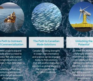 The Pathway: A program for regulatory certainty for instream tidal energy projects